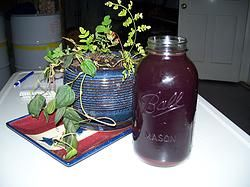 Cold and Flu season~Elderberry and Astragalus Syrup and Gummies