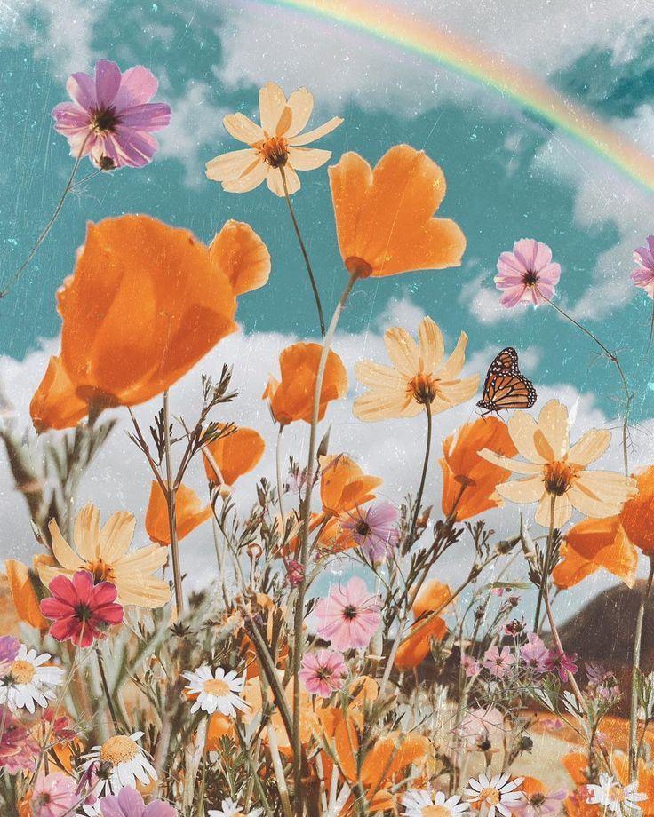Iphone X Wallpaper 336221928431571000 Hd Flower Aesthetic Aesthetic Iphone Wallpaper Art