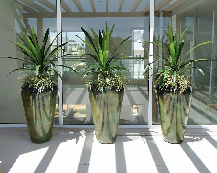 Rea externa planta vasos com flores e folhagens para - Plantas pequenas de interior ...