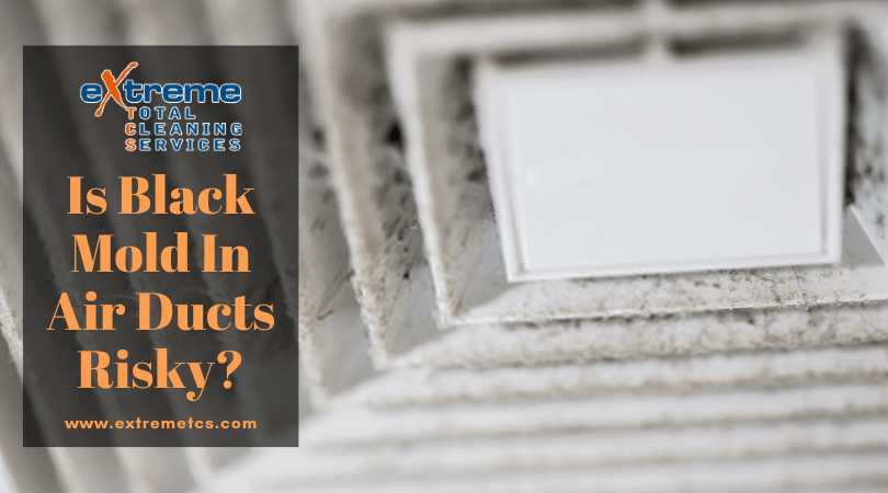Is Black Mold In Air Ducts Risky? in 2020 Air ducts