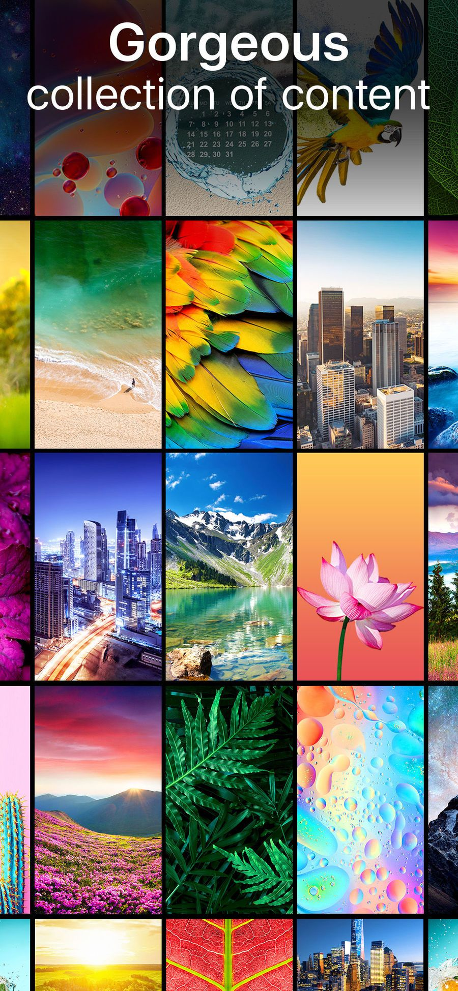 Live Wallpapers Now Iosentertainmentappapps Html
