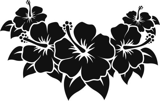 Hibiscus Vector Id165960358 520 329 Hibiscus Floral Printables Flower Outline