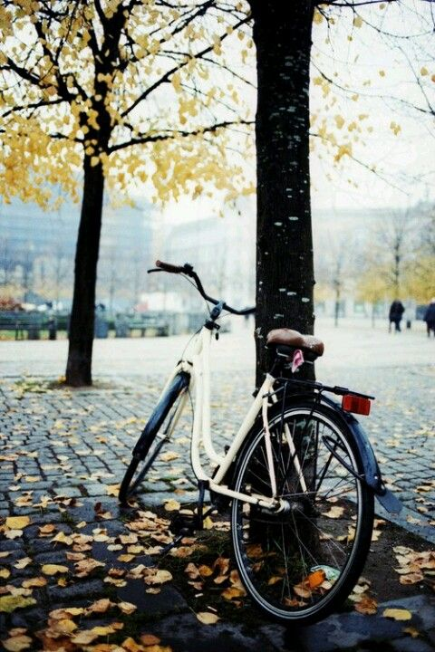 Bicikl Things I Love Pinterest Autumn Bicycle And Fall