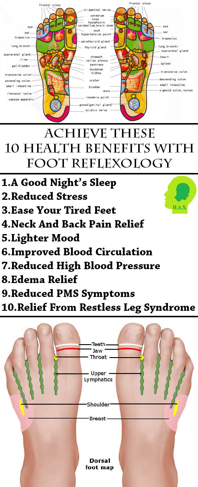 Foot Reflexology Centers On The Theory That There Are -5880