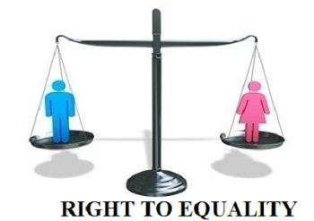 equal protection under the law essay Harvard law review equal protection and disparate impact: round three richard a primus prior inquiries into the relationship between equal protection and disparate impact have.
