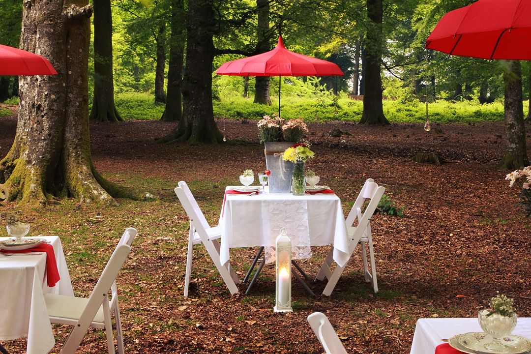 White folding chair hire in the South West www.southwesteventhire.co.uk. Photograph by Sandways China Party