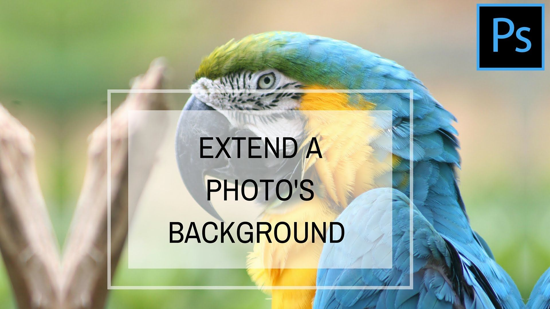 Extend an images background with images