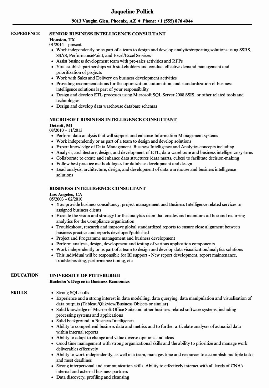 20 Business Intelligence Developer Resume in 2020 Resume