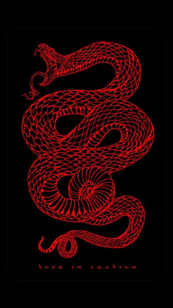 Wallpaper Red Black Snake Love In Caution Snake Wallpaper Red Aesthetic Grunge Red Aesthetic