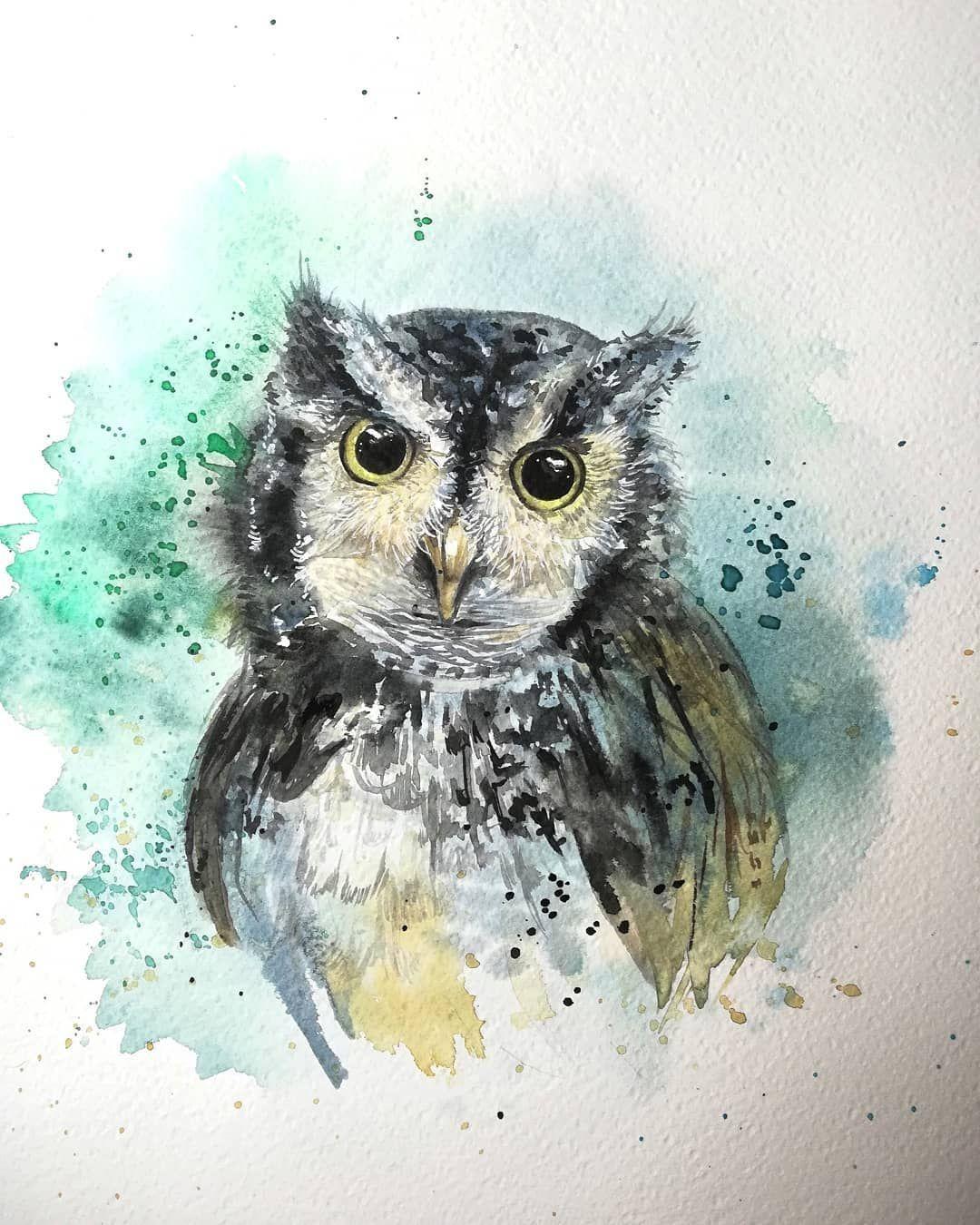 #watercolor #watercolorillustration #watercolorpaintings #painting #artoninstagram #artoftheday #artwork #loveanimals#peintureaquarelle #animalillustration #drawing #hibou