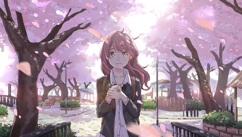 Koe No Katachi, Nishimiya Shouko, Sakura Blossom, School