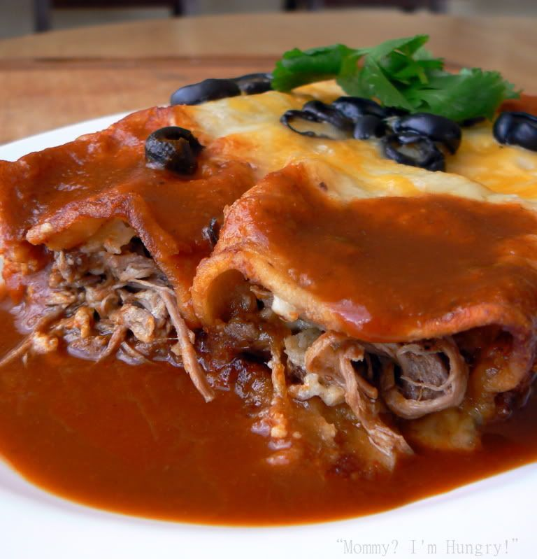 ideas about Shredded Beef Enchiladas on Pinterest | Enchiladas, Beef ...
