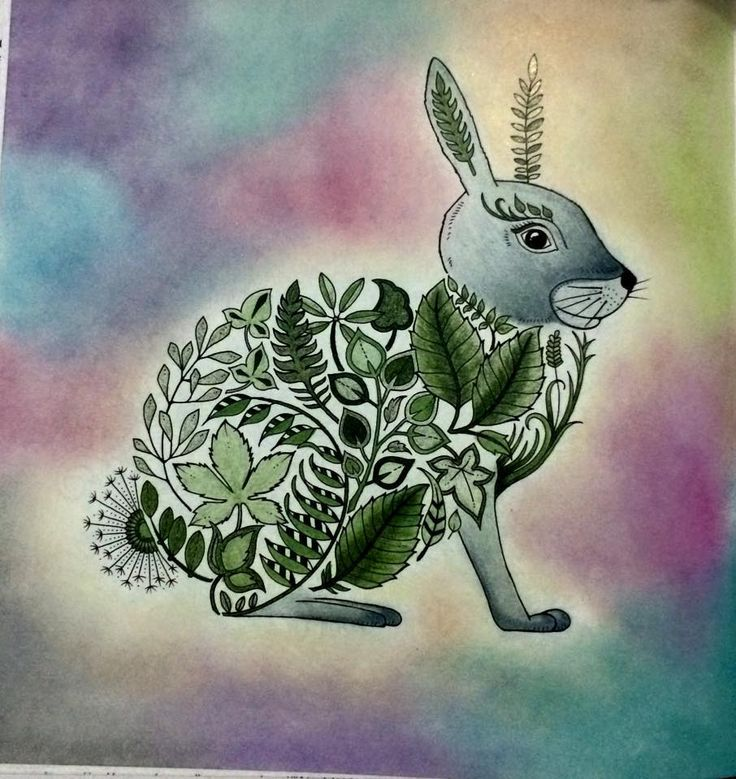Johanna Basford Adult Coloring Books Enchanted Bunnies Mice Forest Book Forests Drawings Of
