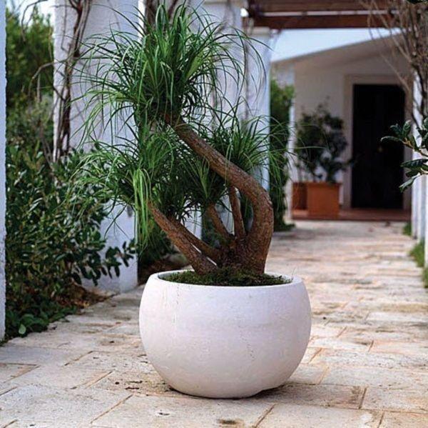 pots à fleurs et jardinières design- 67 idées de déco extérieure