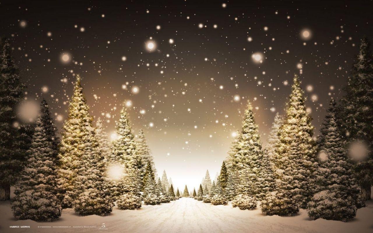Virtual Christmas Tree Christmas Tree Christmas Tree Wallpaper Christmas Desktop Christmas Desktop Wallpaper
