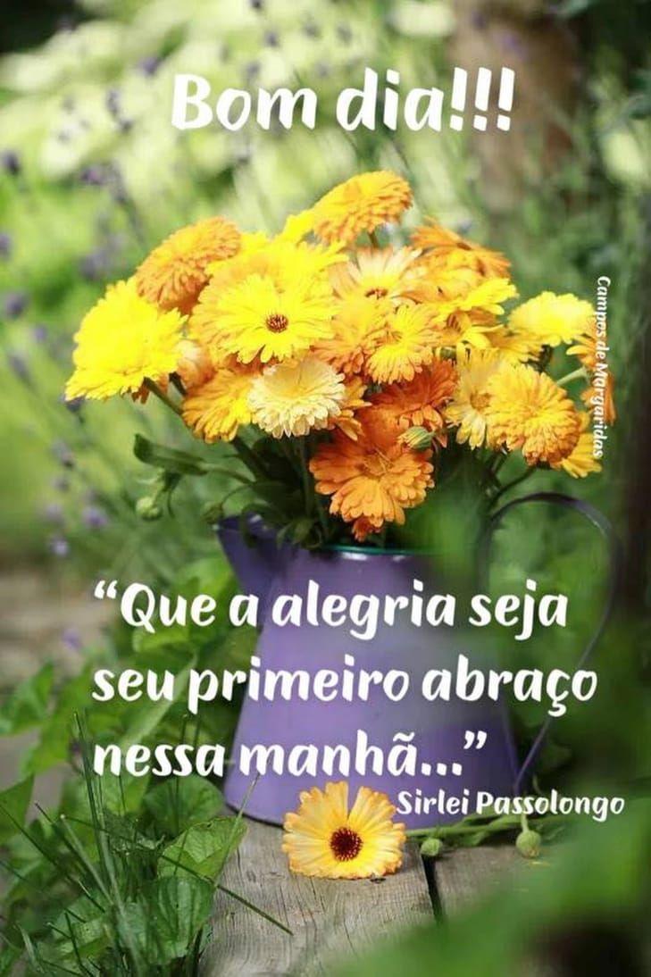 Pin De Rosangela Nogueira Em Mensagens Bom Dia Com Flores