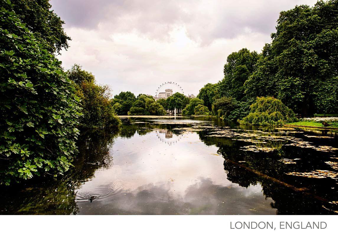 London, England, The Eye from Green Park, Around The World Gallery, www.tamaralackey.com   Tamara Lackey