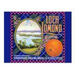 Loch Lomond Orange Flower Postcard | Zazzle.com