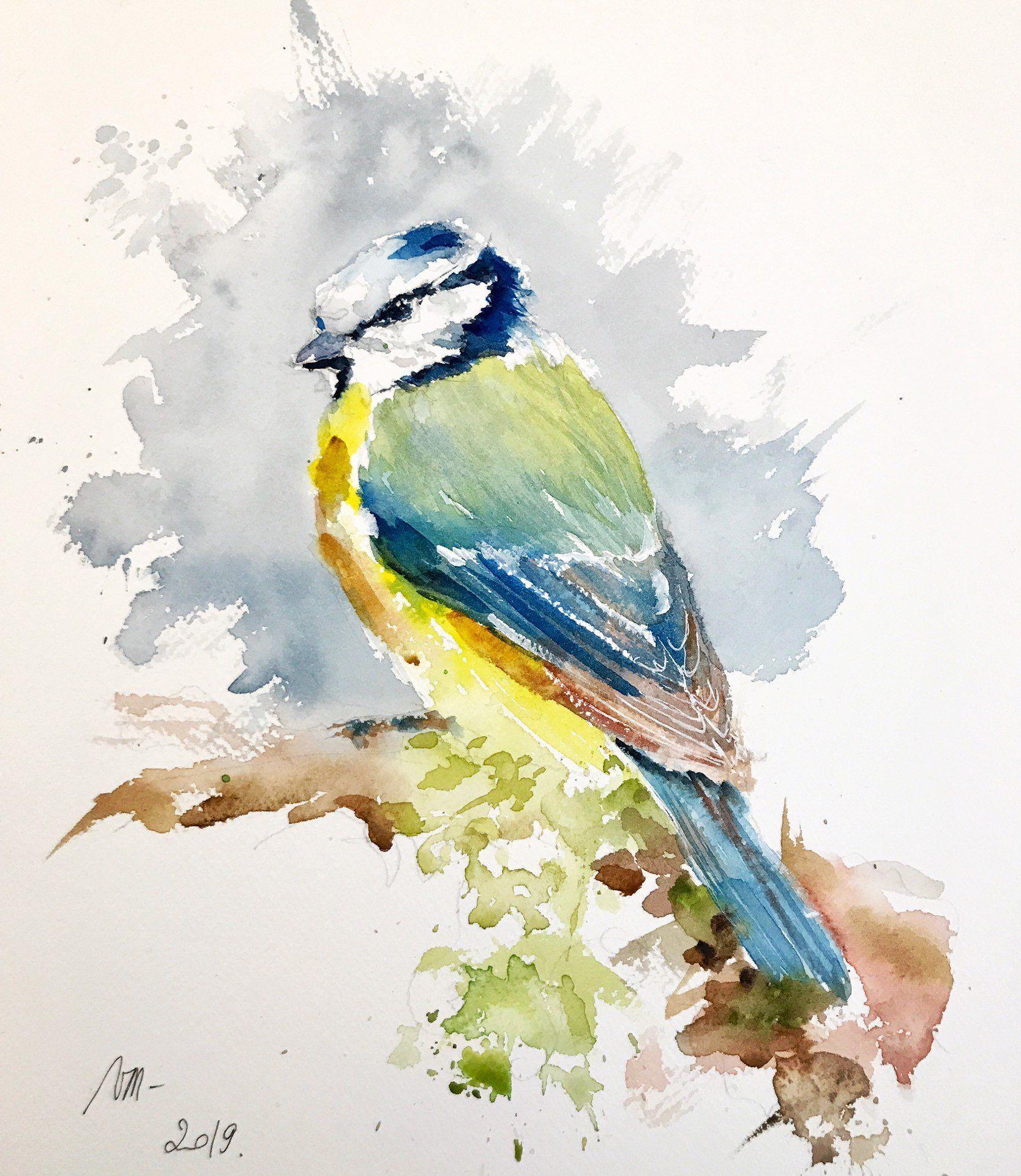Aquarelle Peinture Originale La Mesange Bleue Oiseaux Jardin