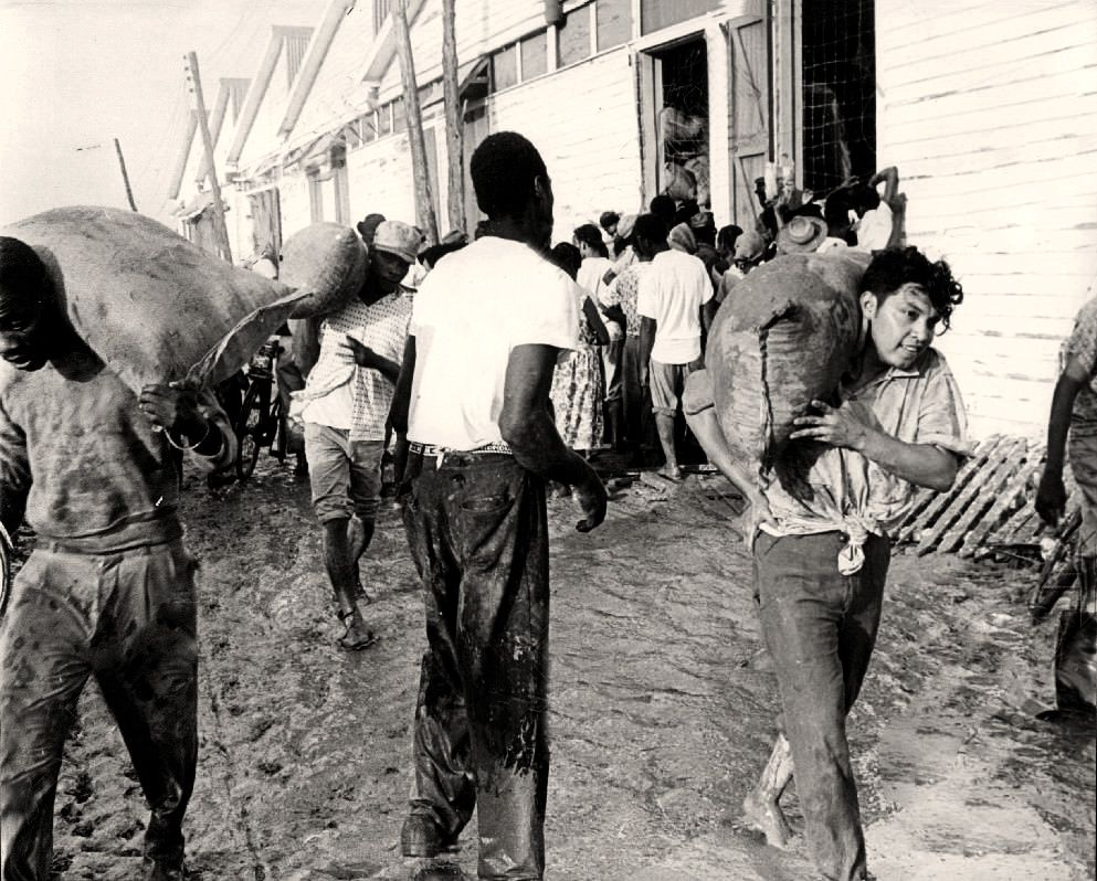 Pin On Belize Vintage Photos