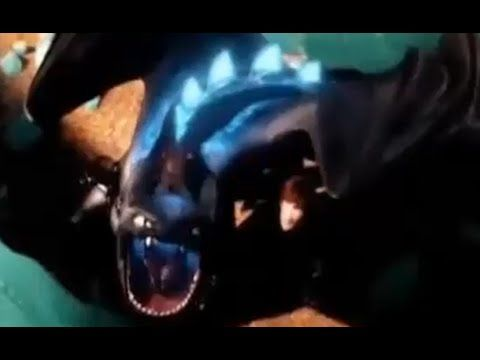 How To Train Your Dragon 2 Toothless Vs Bewilderbeast How To Train Your Dragon Dragon Good Movies