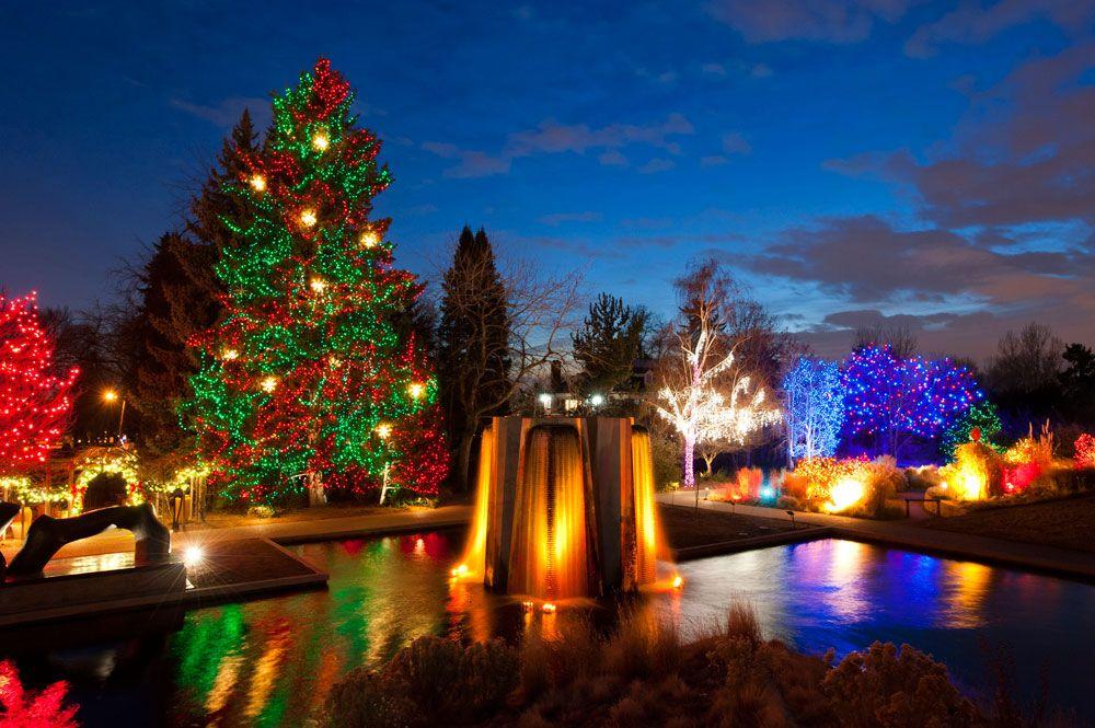 Blossoms of Light --- Denver Botanic Gardens - Blossoms Of Light --- Denver Botanic Gardens Fun Pinterest