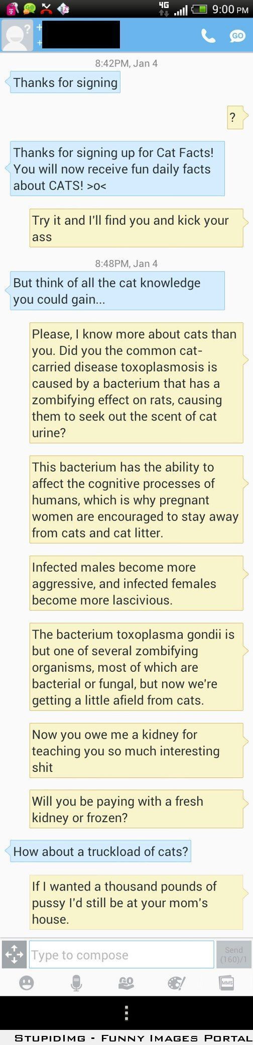 my roommate s ex student attempted to prank him with cat facts