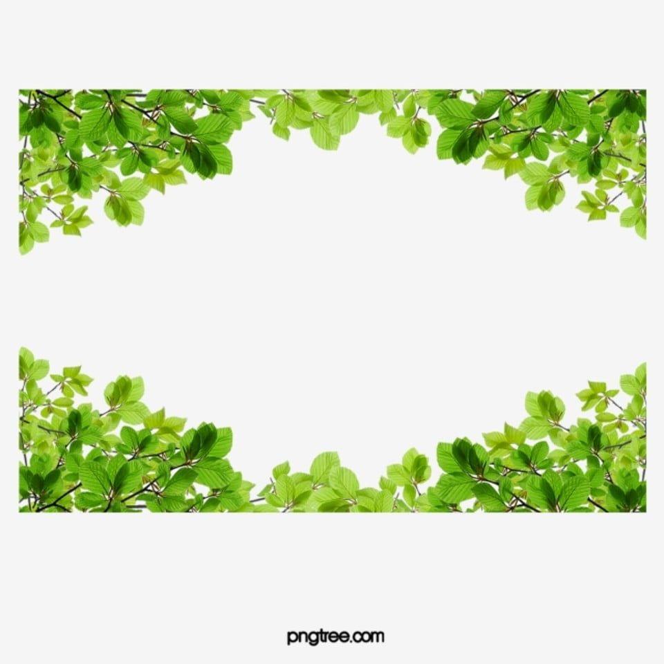 Hojas Verdes Frontera Hoja Marco Arriba Y Abajo Png Y Psd Para Descargar Gratis Pngtree Leaf Border Leaf Clipart Watercolor Leaves