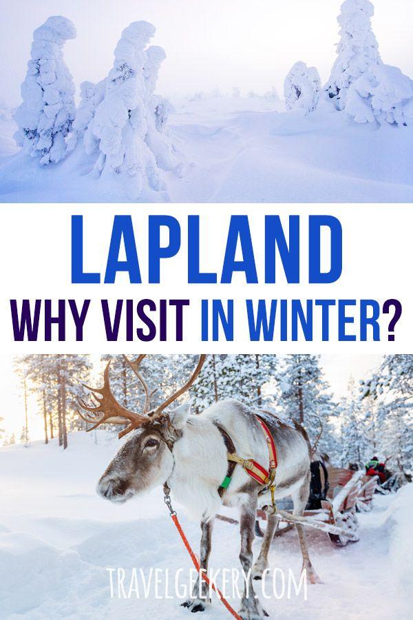Photo of 13 razones para visitar la Laponia finlandesa en invierno