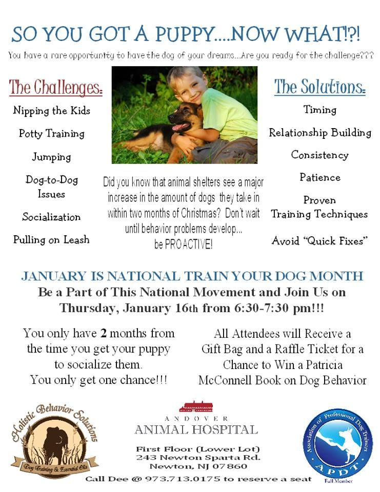 National Train Your Dog Month Getting A Puppy Training Your Dog