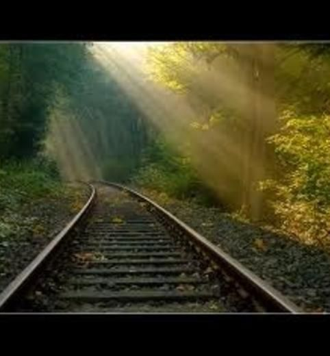 rails and rays