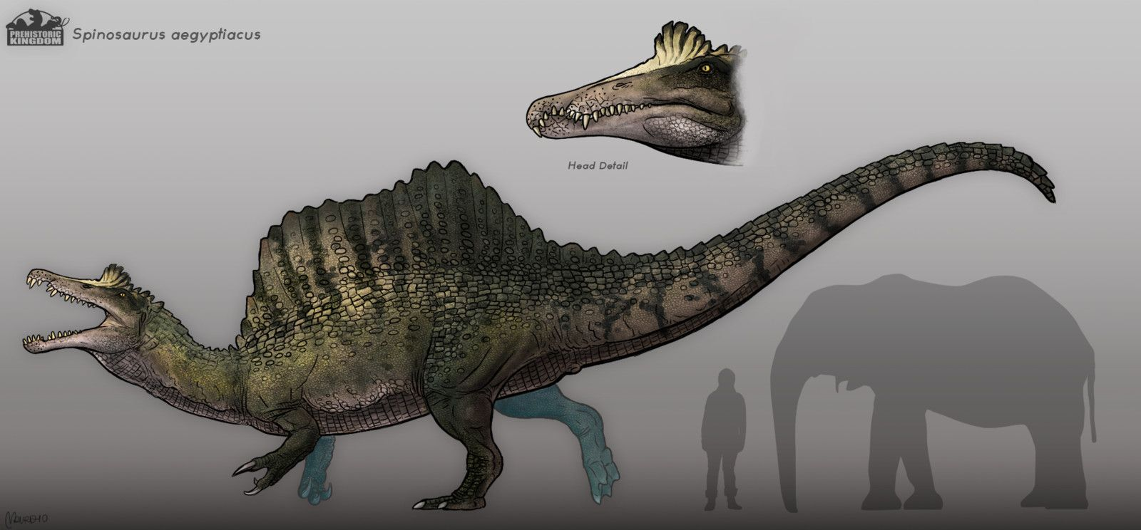Spinosaurus Concept Design Maurizio Morosan On Artstation At Https Www Artstation Com Artwork Qznq9x Spinosaurus Aegyptiacus Spinosaurus Prehistoric Animals