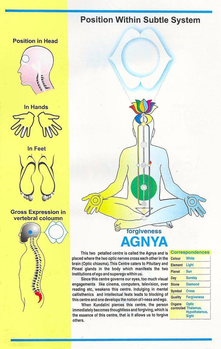 Agnya Www Sahajameditation Com Sahaja Yoga Meditation Chakra Meditation Sahaja Yoga