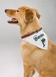 brand new 484f9 ee18a Miami Dolphins-- my dog will have this for sure someday ...