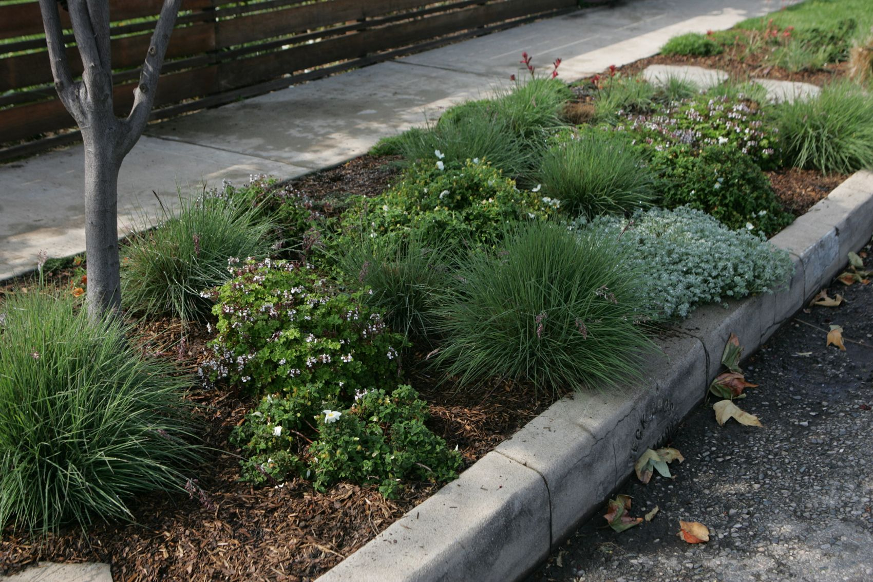 the dry garden replacing that lawn along the sidewalk - Garden Ideas To Replace Grass