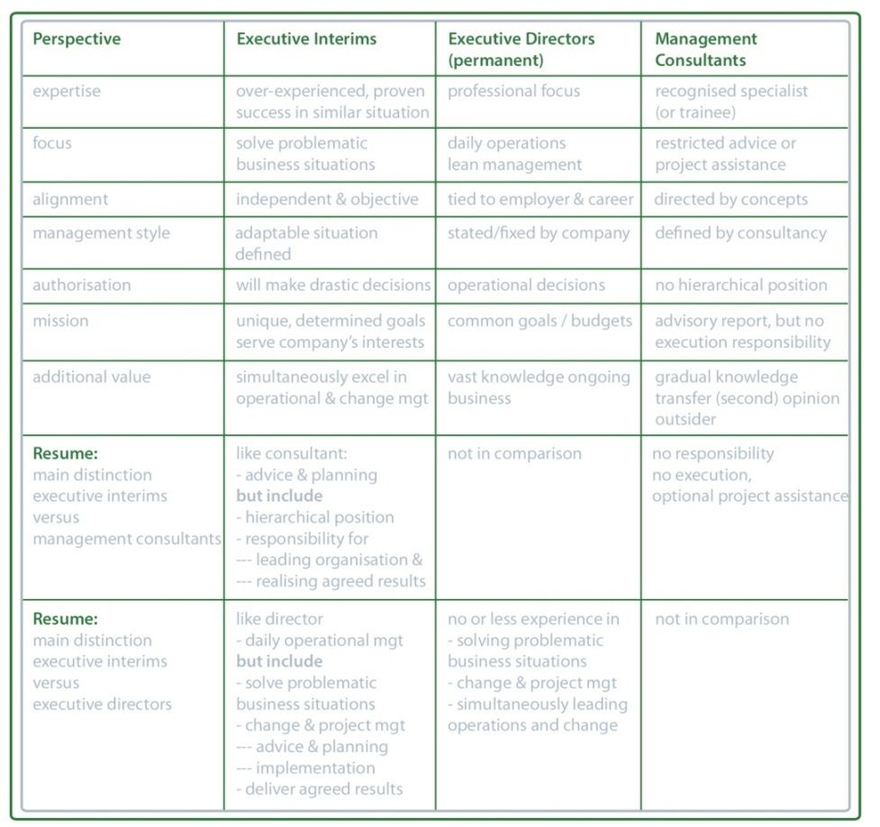 perspective job content comparison  executive interim