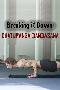 have you mastered chaturanga dandasana  chaturanga