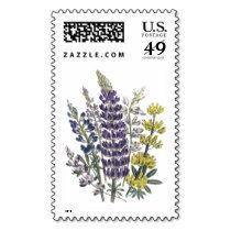 Colorful Vintage Lupins Flower Postage
