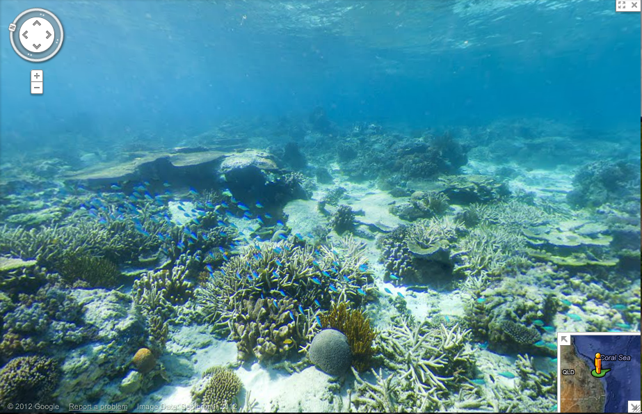 Split View Sky Ocean Floor Coral Reef Blue Cloud Reflection Water Surface 32976525  (1300×1365) | Art | Pinterest | Coral Reefs, Ocean And Reflection