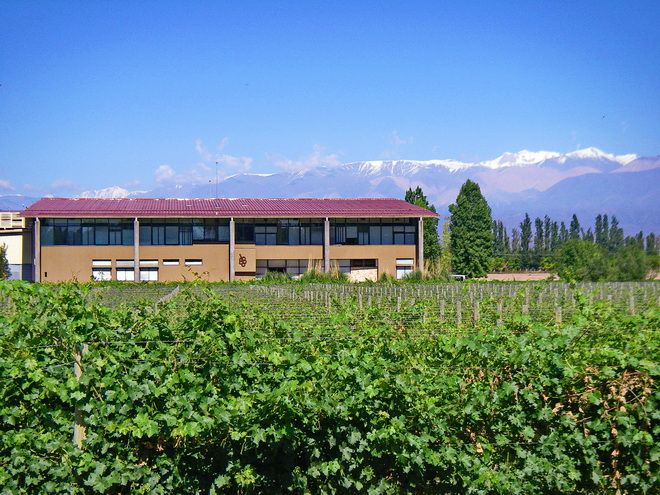 5 Things To Do In Mendoza Argentina Argentina South America