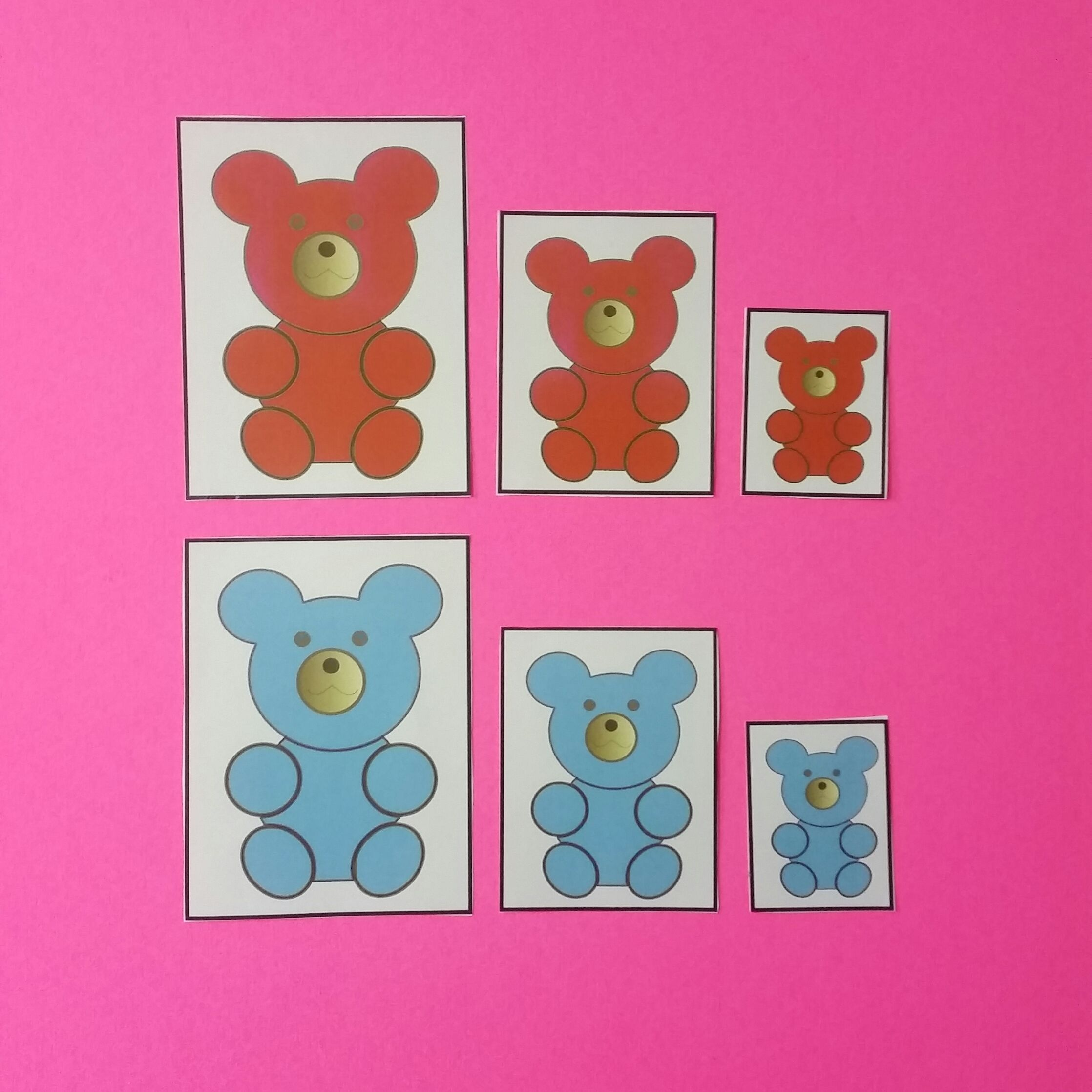 Sort Bear By Size And Color Keywords Bear Teddy File