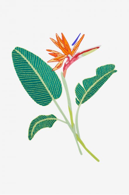 Bird Of Paradise Pattern Free Embroidery Patterns Birds Of Paradise Embroidery Patterns Free Birds Of Paradise Flower