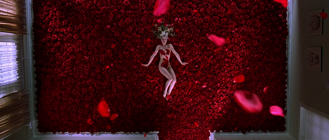 美国丽人 American Beauty (1999) American beauty, Beautiful