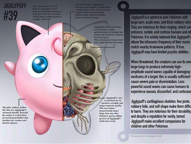 Así se verían los Pokémones por dentro!   geek   Pinterest   Anatomía