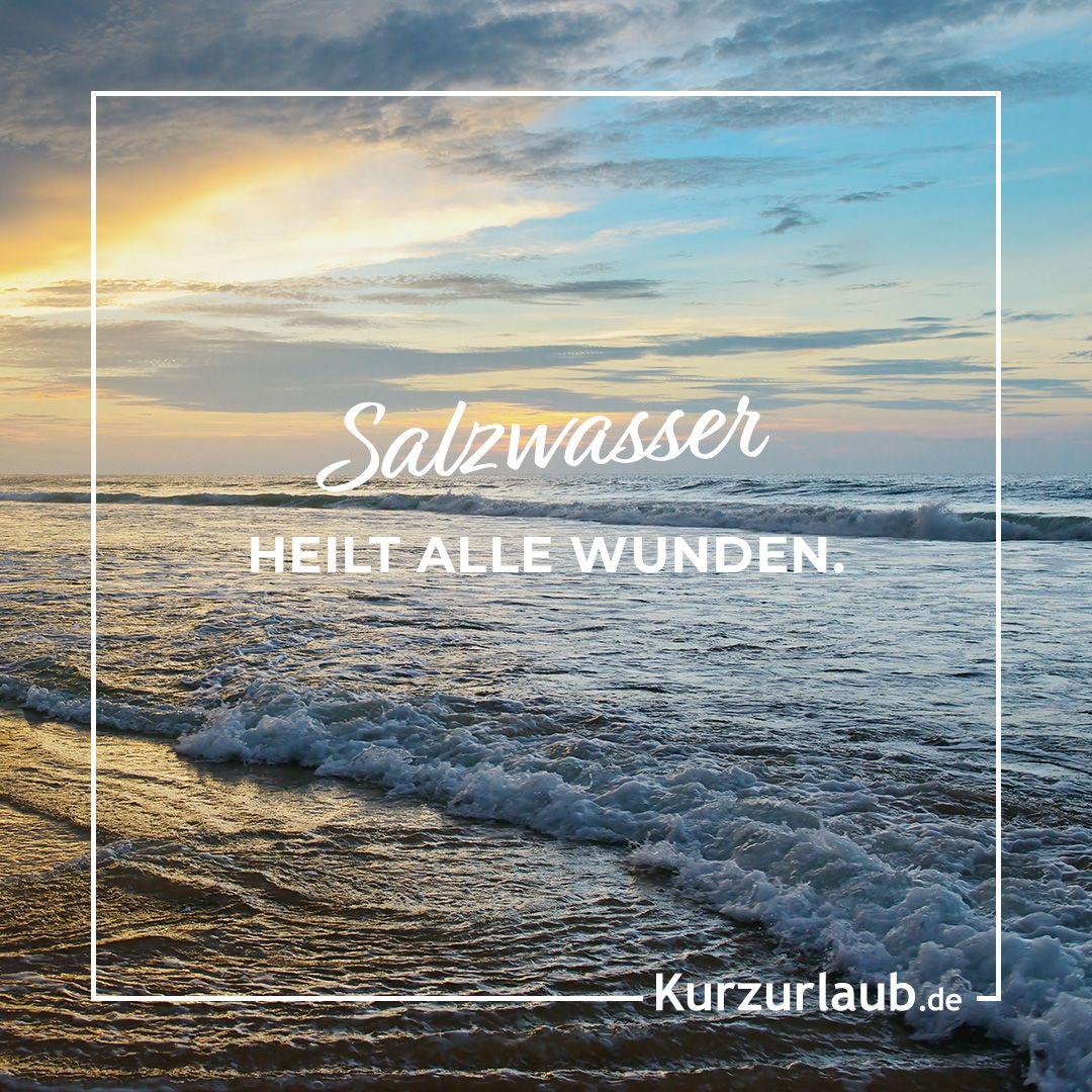 Ostsee Süßwasser Oder Salzwasser