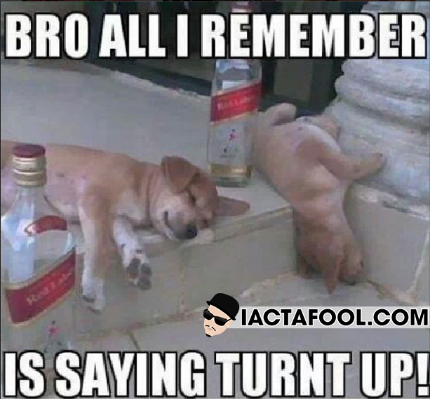 Image result for turnt up funny