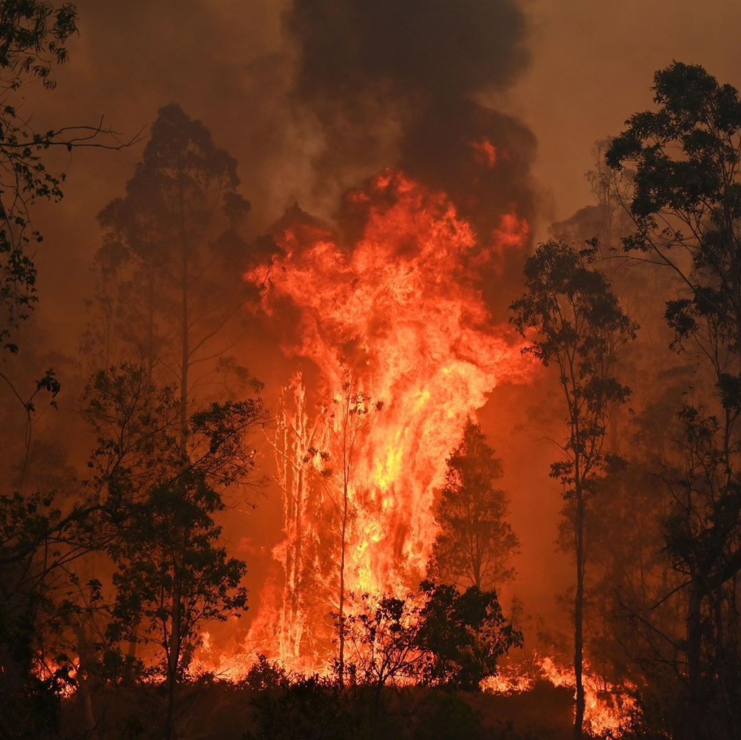 Follow cnnclimate More than 70 bushfires are burning