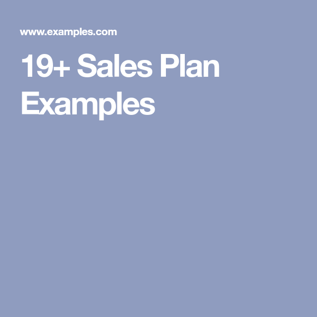 Sales Plan Examples  Bn K Hoch    Business