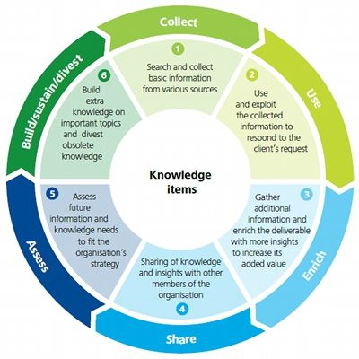 17 Best images about Knowledge Management on Pinterest | Bruce lee ...