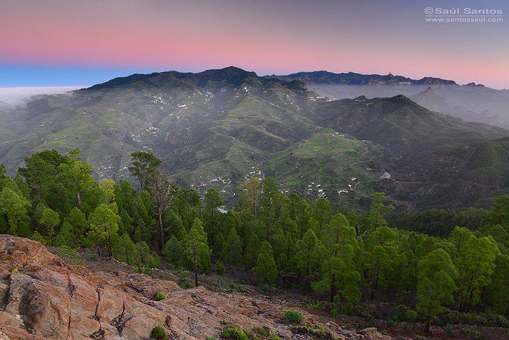 Descubre los senderos del antiquísimo macizo montañoso de Tamadaba - Foto de Saul Santos